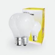 FFL Frost bulb A60 40w/60w/100w E27